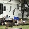 RV Lot for Rent: Goose Creek RV Park, Wilbur, WA