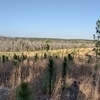 RV Lot for Sale: Large 10 Acre Tract with Amazing long Range Views Adjoining State Forest, Patrick, SC