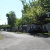 Mobile Home Park: Lyndon Lawn MHC - 55+ Adult Community, Central Square, NY