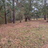Mobile Home Lot for Sale: Agricultural,Mobile Home,Residential - Johns Island, SC, Johns Island, SC