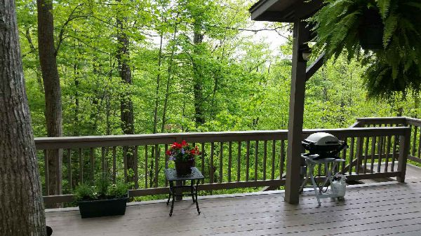 Gorgeous Wooded Lot For Rv Park Model Rv Lot For Sale In