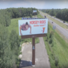 Billboard for Rent: CH Action Boards , Circle Pines, MN