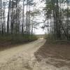 Mobile Home Lot for Sale: VA, RUTHER GLEN - Land for sale., Ruther Glen, VA