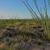 Mobile Home Lot for Sale: Mobile Home/Manufactured - Sahuarita, AZ, Sahuarita, AZ
