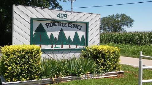 Pine Tree Mobile Home Park Directory Mobile Home Park In Bowling
