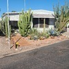 Mobile Home for Sale:  $14,200 / 1br - 616ft2 - Bring Your Toothbrush and Enjoy the Superstitions! #26 (Palms), Apache Junction, AZ