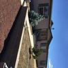 Mobile Home for Sale: Single Level, Manufactured/Mobile - Overgaard, AZ, Heber-Overgaard, AZ