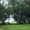Mobile Home Park for Sale: Pleasent Lakeside Retirement Park, Sebring, FL