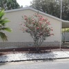 Mobile Home for Sale: 2006 Kingswoo