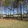Mobile Home Lot for Rent: Large Lot for Rent, Hazlehurst, GA