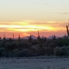 RV Park: Desert Gardens RV Park, Florence, AZ
