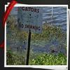 RV Park/Campground for Directory: Lake Glenada RV & Mobile Home Park- Directory, Avon Park, FL