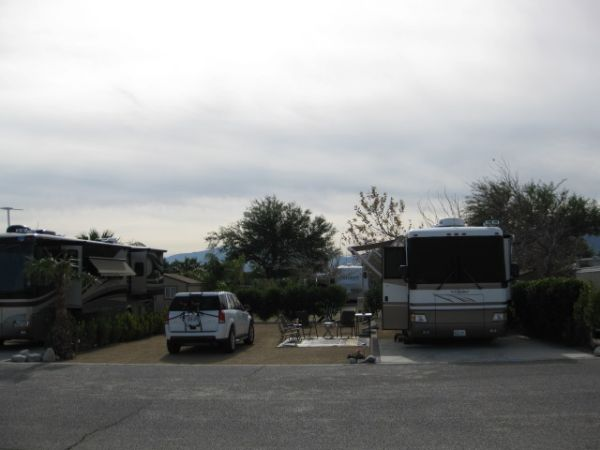 Lot 186 Two Springs Rv Resort Rv Lot For Sale In Palm