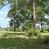 Mobile Home Lot for Sale: Commercial,Mobile Home Park,Residential Single Family - Wiggins, MS, Wiggins, MS