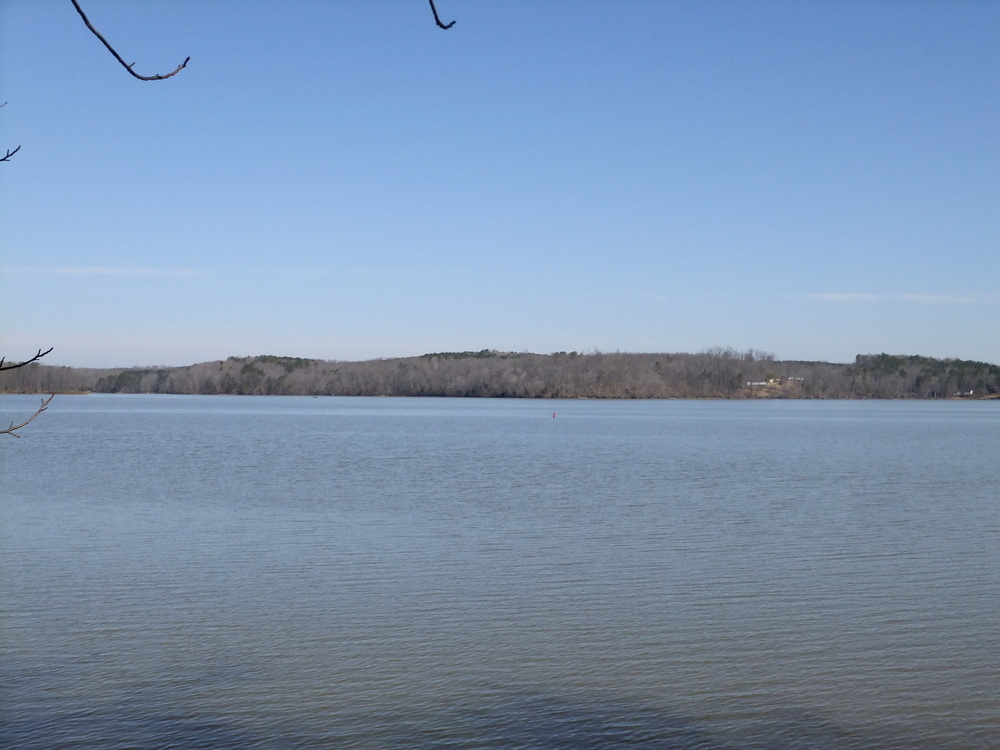 Amazing shoreline