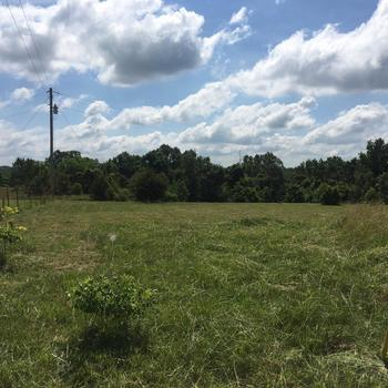 Incredible 6 Mobile Home Lots For Sale Near Richland Mo Download Free Architecture Designs Scobabritishbridgeorg