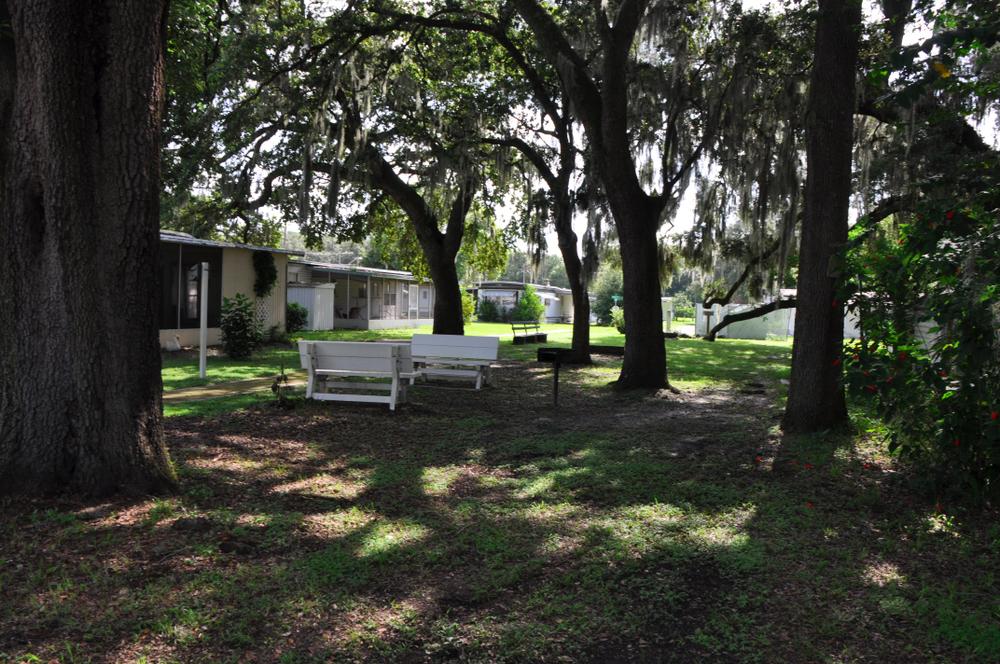 Sixth Avenue - mobile home park in Zephyrhills, FL 477117