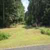 Mobile Home Lot for Sale: Agricultural,Mobile Home,Residential - Islandton, SC, Islandton, SC