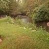 RV Lot for Sale: Beautiful River Lot in Blairsville GA, Blairsville, GA