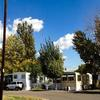 Mobile Home Park for Directory: Shamrock MHP, Grand Junction, CO