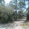 RV Lot for Rent: Moondance RV Lot, Cape San Blas, Florida, Port Saint Joe, FL