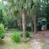 Mobile Home for Sale: Single Wide, Mfg/Mobile Home - Moncks Corner, SC, Moncks Corner, SC