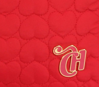 case notebook capricho love vi red detalhe
