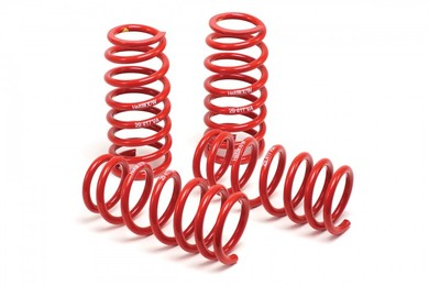 Hr race springs