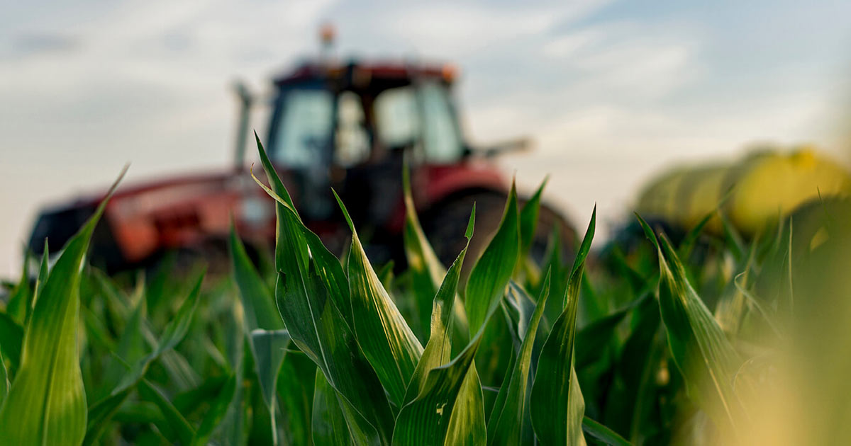 Crop Protection Innovations Protecting Natural Resources