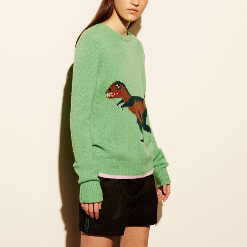 COACH REXY INTARSIA SWEATER - WOMEN'S