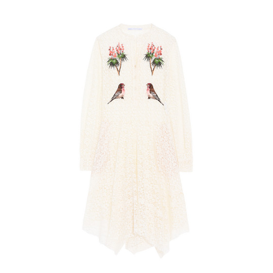embroidered robin lace dress