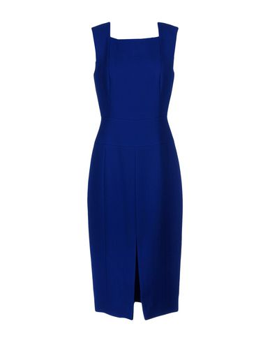 JASON WU , Bright Blue