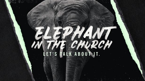 Elephant 2.0 wide