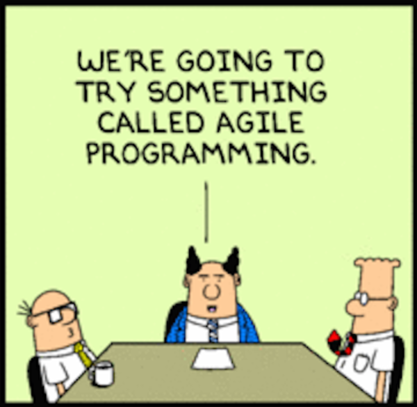 """Dealing with """"Agile"""" clients"""
