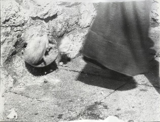 Stilinovic odnos noga kruh 3 a