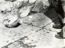 Stilinovic odnos noga kruh 3 b