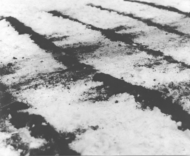 Peter bartot roztyly rastra v snehu  1969 bb