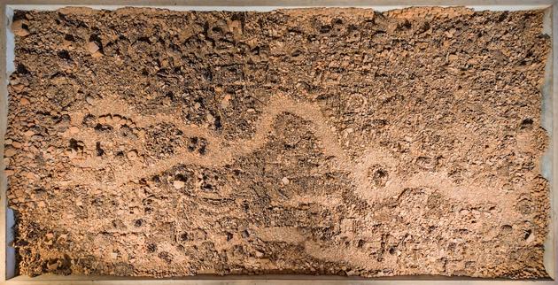 Vivan sundaram black gold %282012 2013%29 top view courtesy kochi muziris biennale