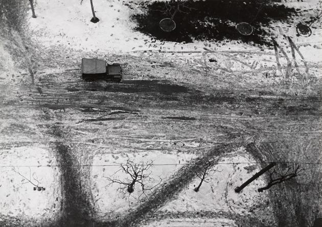 Photograph record  1959  hiroshi hamaya. department of photography the museum of modern art  new york