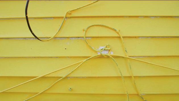 Yellow screenfreeze