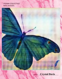 Evolution cd 2020 poema colectivo