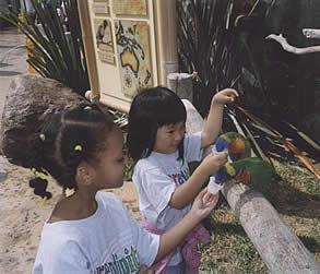 serendipity preschool serendipity early care and education center preschool 166
