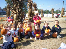 Profile_main_tn_480_copy_of_pumpkin_patch.jpg