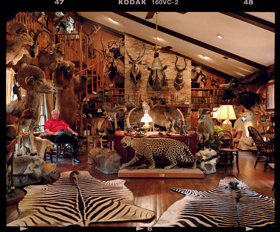 The sheer diversity of stuffed animals in the one room is extraordinary, but the focal point is not the leopard or the rhino but the man with the cigar, relaxed in the corner. He is a lawyer from Dallas, Texas, and has shot all of the animals. In fact, his collection amounts to more than 230 stuffed and mounted trophies, which he has killed during a lifetime of hunting. He is a recipient of the Dallas Safari Club Africa Big Game Award for his collection of African elephant, buffalo, lion and leopard, and the Outstanding Hunting Achievement Award for his 30-year quest and collection of all 30 North American 'big game' animals, of which 15 are 'records class' (big). The picture is one of a series of thought-provoking images that David has taken to 'illustrate the complex relationship between man and animal, hunter and hunted'. Photo by: David Chancellor (UK) /2012: Veolia Environnement Runner-up The World in Our Hands Award.