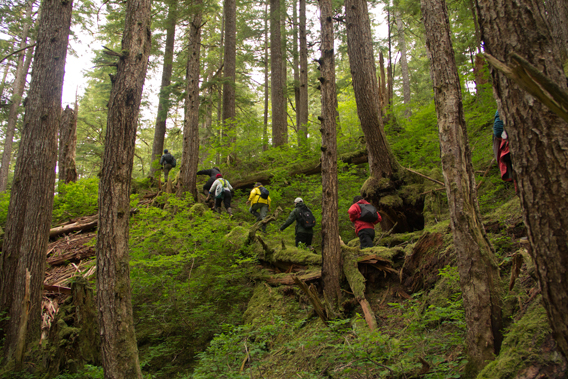 Hiking in the Tongass. Photo courtesy of the Sitka Conservation Society.