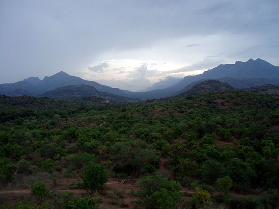Anamalai Hills viewed from Chinnar Wildlife Sanctuary. Photo by: Matthieu Aubry.