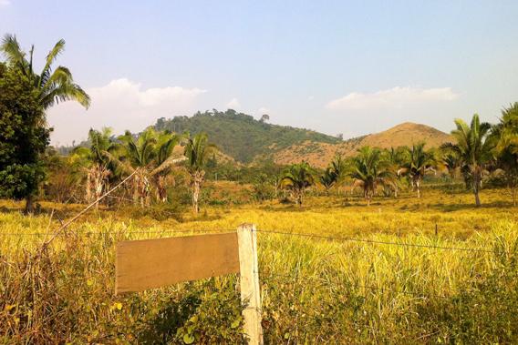 Deforested hillsides. Photo by: Karimeh Moukaddem.