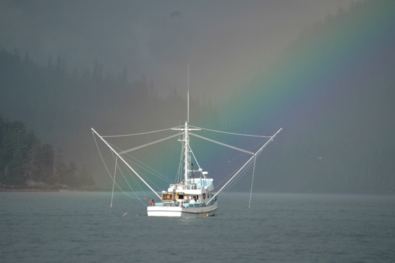 Fishing is one of the most important industries in the region, but can be imperiled by unsustainable logging. Photo by: Matthew Dolkas.