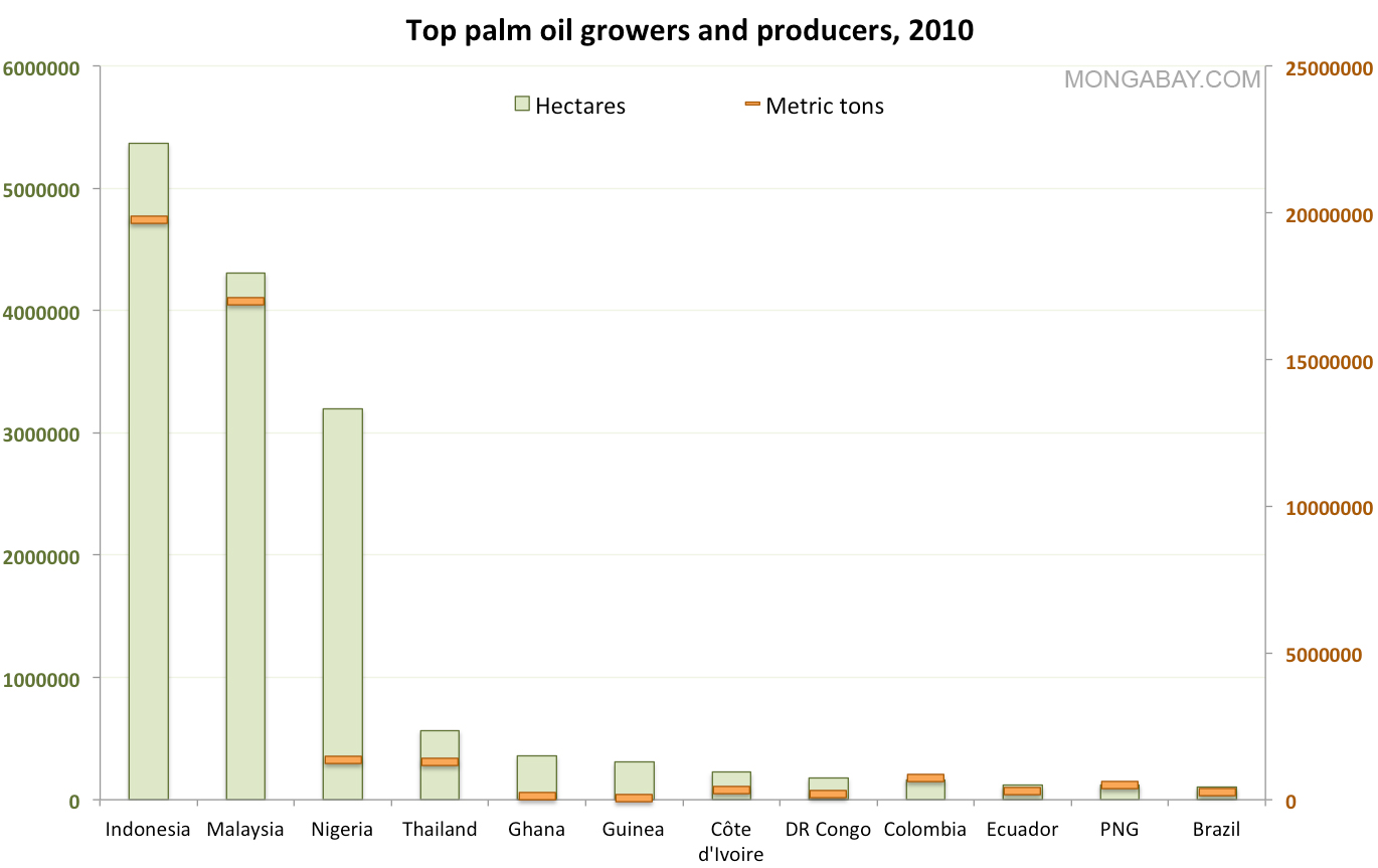 Chart: Top palm oil producers
