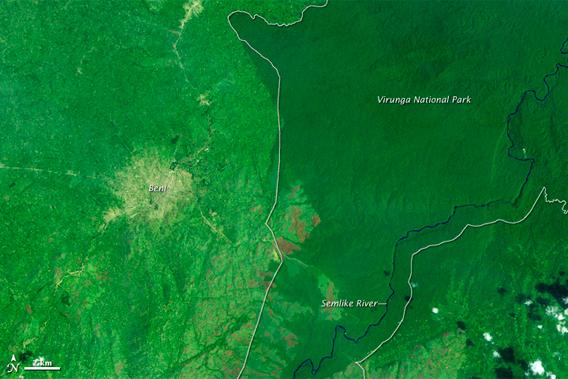 NASA satellites catch vast deforestation inside Virunga National Park